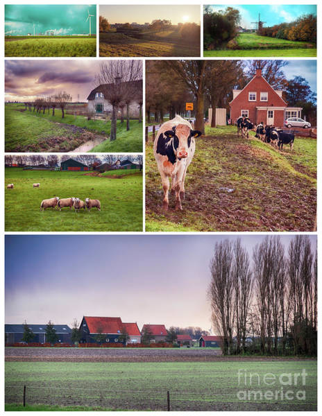 Photograph - collage of autumn landscape of Netherlands by Ariadna De Raadt