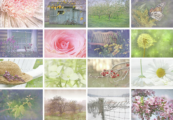 Wall Art - Photograph - Collage Of Seasonal Images With Vintage Look by Sandra Cunningham