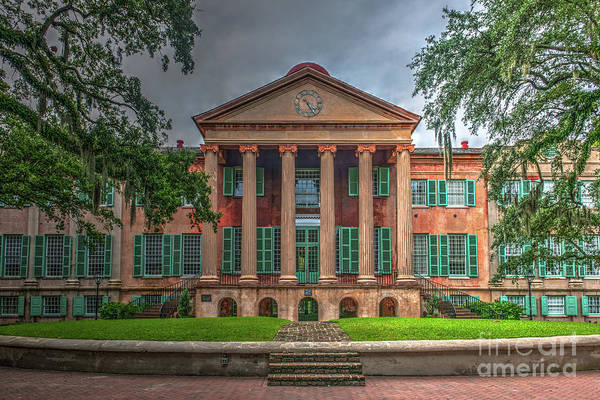 Photograph - College Of Charleston - Go Cougars by Dale Powell