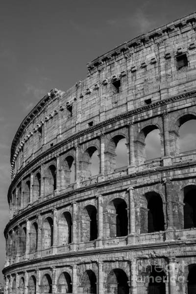 Coliseum Photograph - Colleseum Rome Italy by Edward Fielding