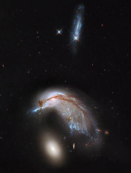 Photograph - Colliding Galaxy Pair Arp 142 by Artistic Panda