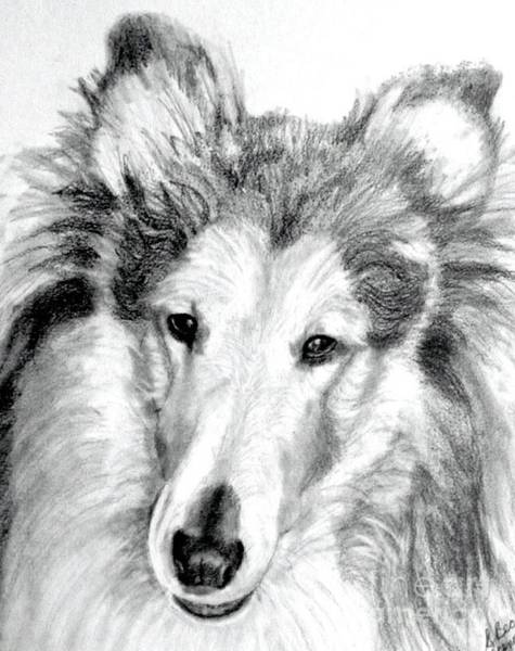 Wall Art - Painting - Collie Rough Lover by Susan A Becker