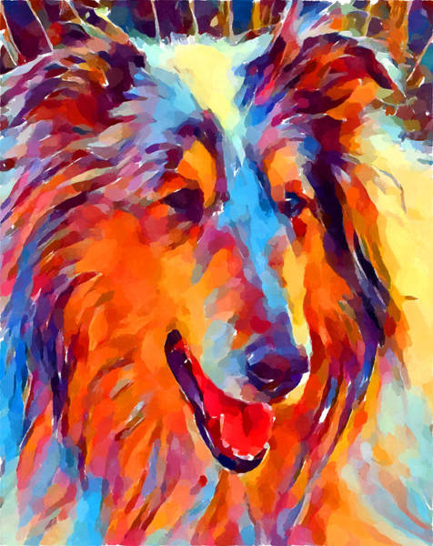 Wall Art - Painting - Collie Watercolor by Chris Butler