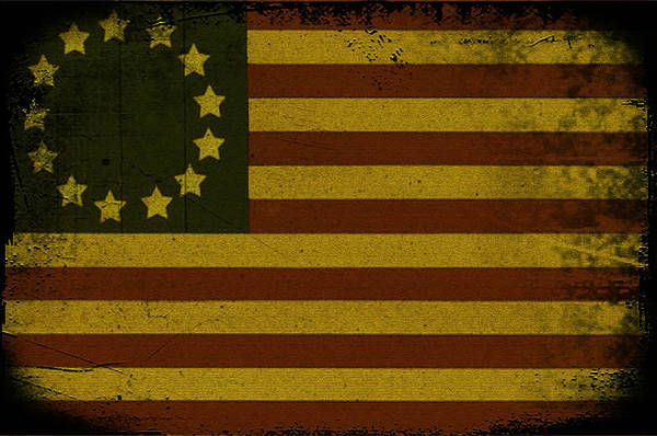 American Revolution Photograph - Colonial Flag by Bill Cannon