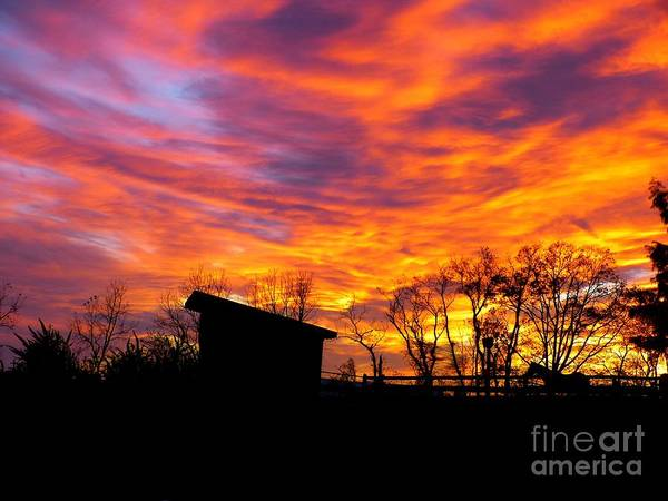 Photograph - Color In The Sky by Donald C Morgan