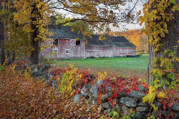 Photograph - Color Of New England by Bill Wakeley