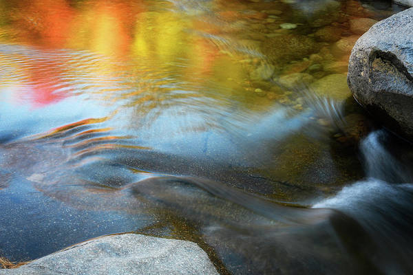 Photograph - Color On The Swift River Nh by Michael Hubley