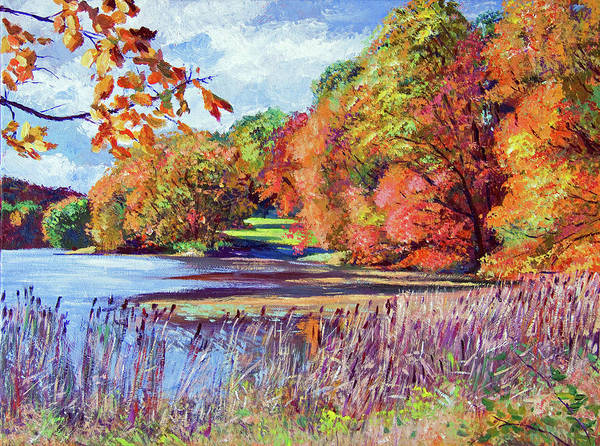 Painting -  Color Season Impressions by David Lloyd Glover