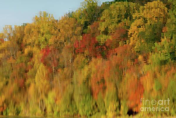 Photograph - Color Splash by Rod Best