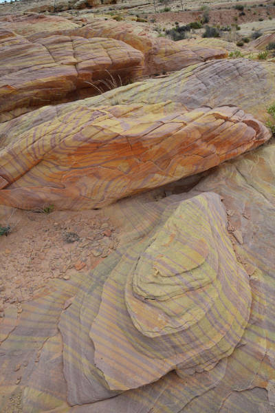 Photograph - Color Swirling In Sandstone In Valley Of Fire by Ray Mathis