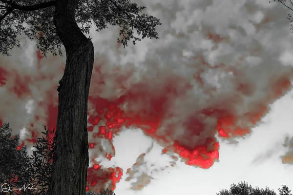 Photograph - Color The Clouds by Dennis Dempsie
