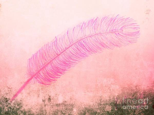 Drawing - Color Trend Feather In The Wind by Rachel Hannah