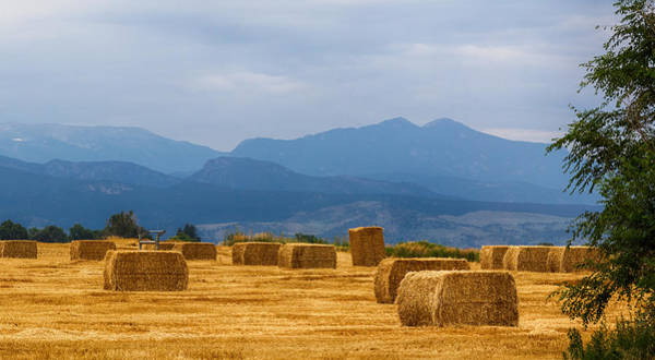 Photograph - Colorado Agriculture Farming Panorama View Pt 2 by James BO Insogna