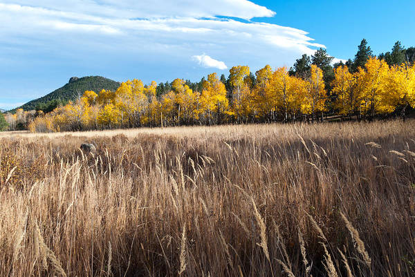 Photograph - Colorado Autumn Meadow Grasses And Mountain Scene by Cascade Colors