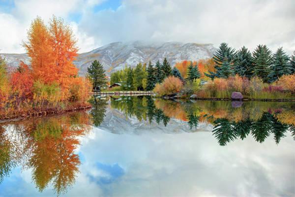 Photograph - Colorado Autumn Splendor - Aspen by Gregory Ballos