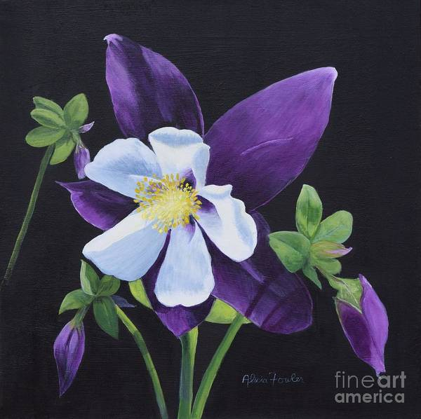 Painting - Colorado Blue Columbine by Alicia Fowler