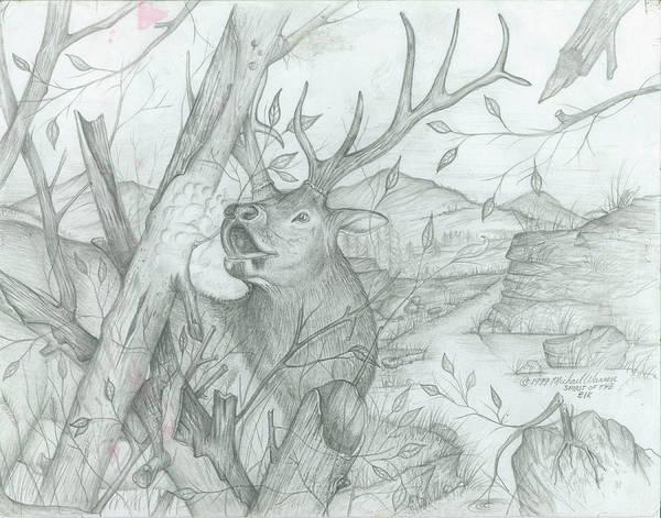 Elk Mountain Drawing - Colorado Buggler by Michael Warren