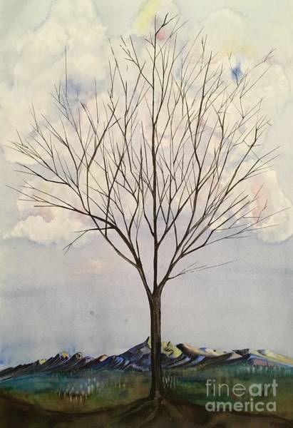 Mixed Media - Colorado Cottonwood by Mastiff Studios