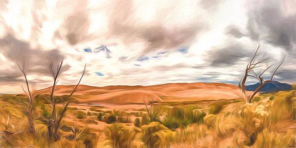 Colorado Dunes Art Print