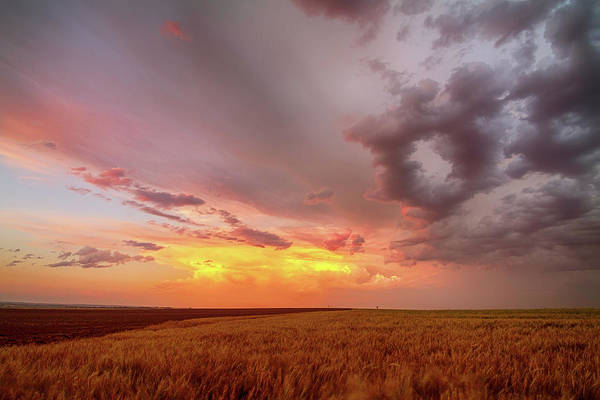 Photograph - Colorado Eastern Plains Sunset Sky by James BO Insogna