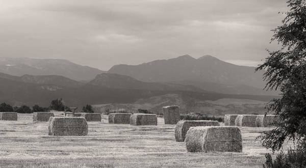 Photograph - Colorado Farming Panorama View In Black And White Pt 2 by James BO Insogna
