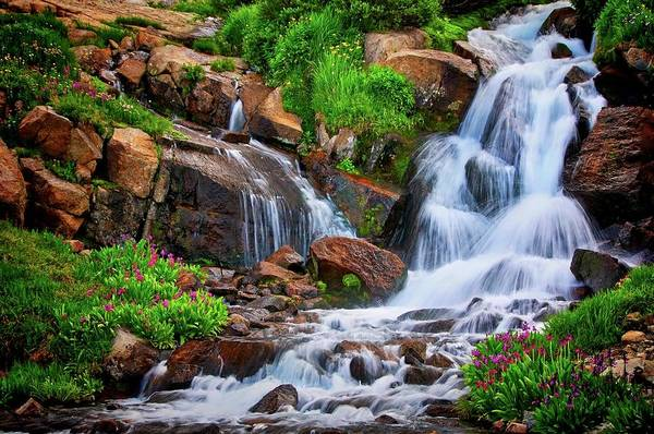 Photograph - Colorado Mountain Stream, Indian Peaks Wilderness by Flying Z Photography by Zayne Diamond