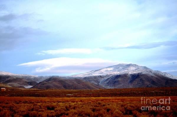 Photograph - Colorado Mountain Vista by Cindy Schneider