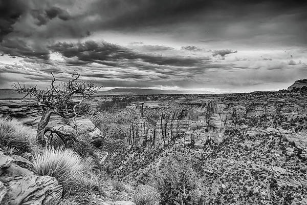 Photograph - Colorado National Monument In Black And White by James BO Insogna