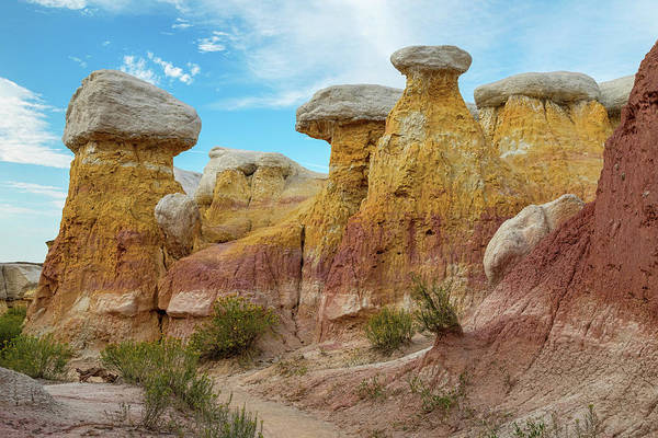 Photograph - Colorado Paint Mines Formations by James BO Insogna