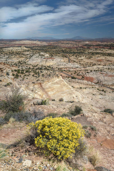 Grand Staircase National Monument Photograph - Colorado Plateau by Joseph Smith