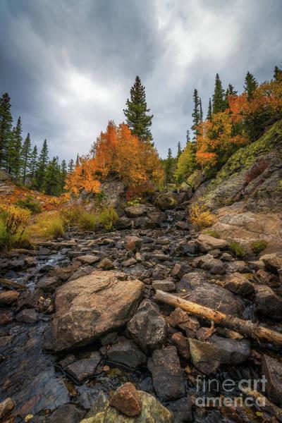 Wall Art - Photograph - Colorado Rockies  by Michael Ver Sprill