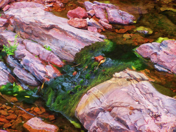 Painting - Colorado Springs Area Digital Oil #28 by Chris Flees