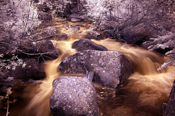 Wall Art - Photograph - Colorado Stream In Infrared by Thomas Bomstad