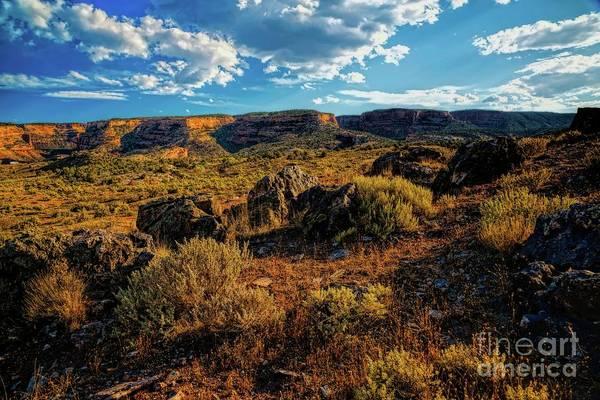 Photograph - Colorado Summer Evening by Jon Burch Photography
