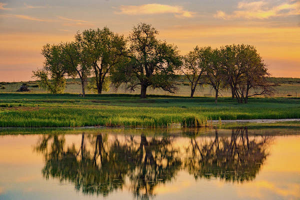 Photograph - Colorado Trees And Lake At Sunrise by John De Bord