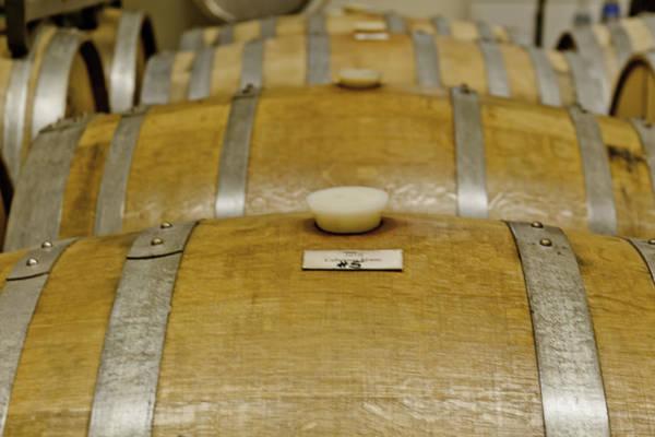 Photograph - Colorado Wine Barrels by Teri Virbickis