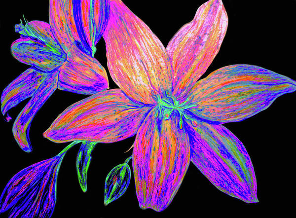 Wall Art - Mixed Media - Colored Pencil Flower  by Lisa Stanley