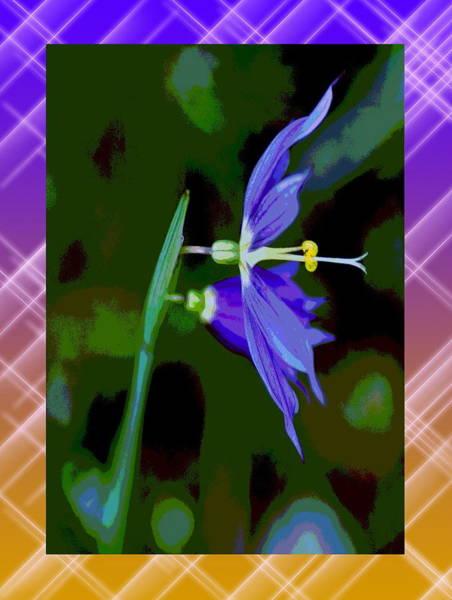 Spokane Digital Art - Colored World by Ben Upham III