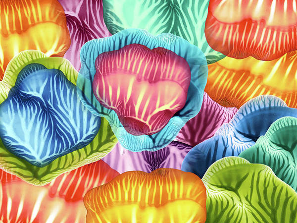 Wall Art - Painting - Colorful Abstract Flower Petals by Amy Vangsgard