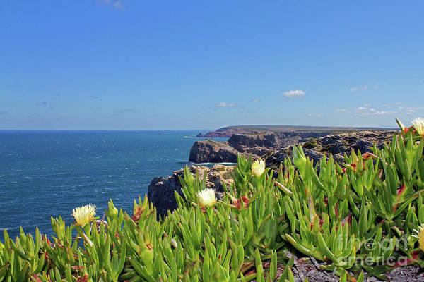 Wall Art - Photograph - Colorful Algarve Coast by Nieves Nitta