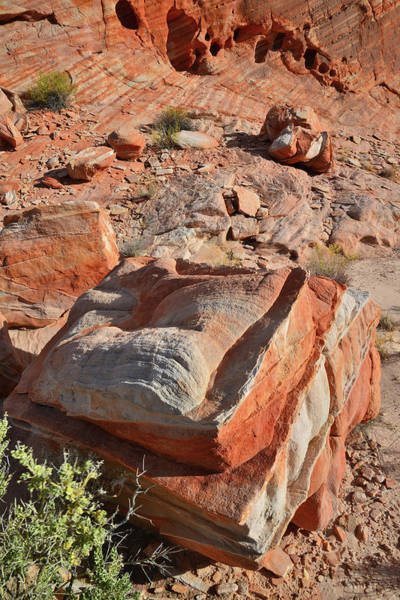 Photograph - Colorful Boulders Of Valley Of Fire by Ray Mathis