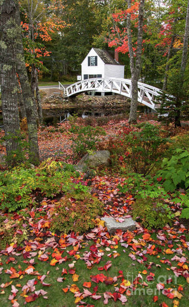 Photograph - Colorful Bridge by Karin Pinkham
