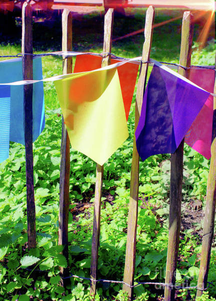 Wall Art - Photograph - Colorful Bunting by Tom Gowanlock