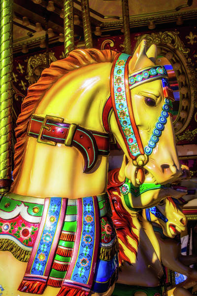 Photograph - Colorful Carrousel Horse Ride by Garry Gay