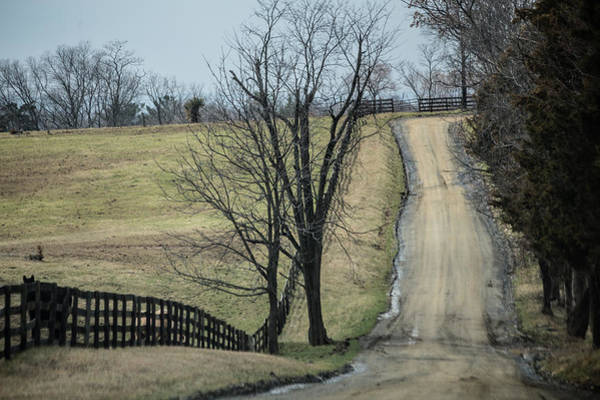 Photograph - Country Dirt Road by Karen Saunders