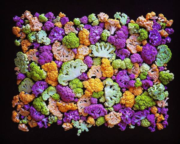 Photograph - Colorful Cauliflower Mosaic by Sarah Phillips