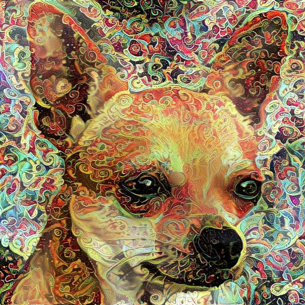 Photograph - Colorful Chihuahua Abstract Dog Portrait by Peggy Collins