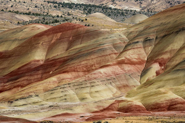 Photograph - Colorful Claystone Hills by Robert Potts