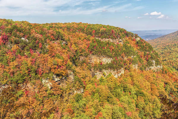 Cloudland Canyon Photograph - Colorful Cloudland Canyon In The Fall by John M Bailey