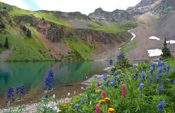 Photograph - Colorful Colorado Summer by Cascade Colors